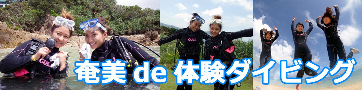 奄美大島で体験ダイビング