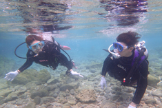 奄美体験ダイビング安心のまずは浅瀬で練習